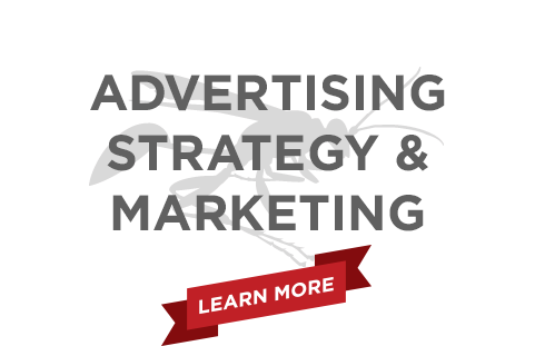 Black Wasp Digital Marketing Services